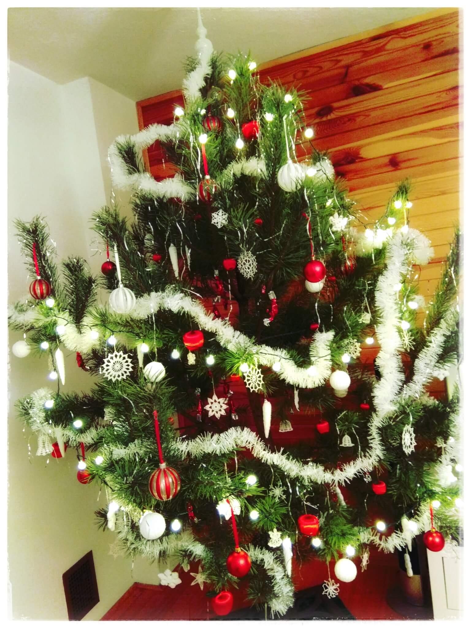 Náš-vánoční-stromek